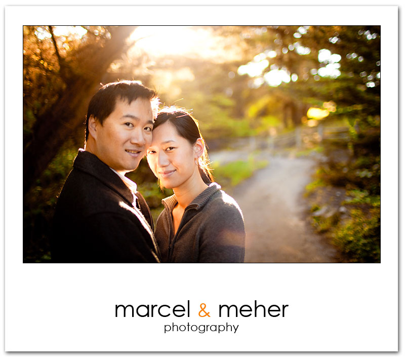 San Francisco Engagement session Lands End