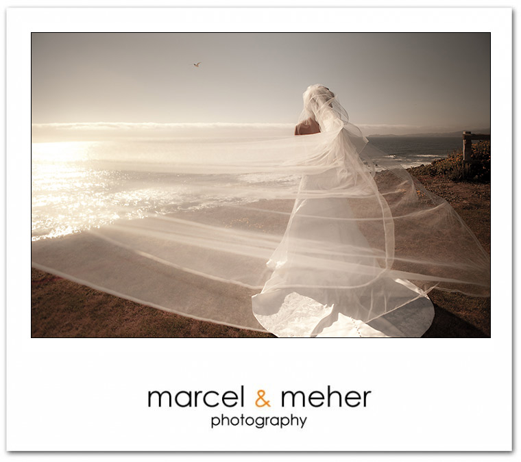 bride with veil blowing in the wind, on the cliffs, at half moon bay golf links