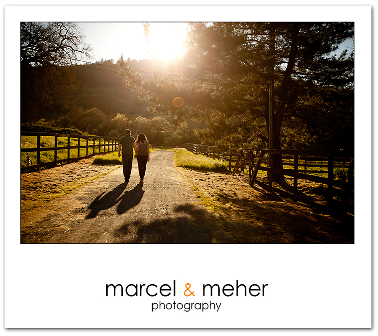 wine country engagement session, napa and sonoma county engagement session