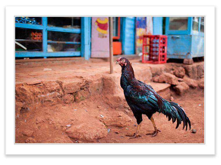 Matheran, India