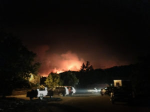 santa rosa fire, tubs lane fire, sonoma fire, wine country fire